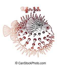 Graphic puffer fish