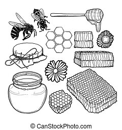 Graphic set of honey, caps, dripper, honeycombs, bees and flowers