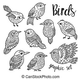Graphic set with hand drawn exotic birds. Line art design