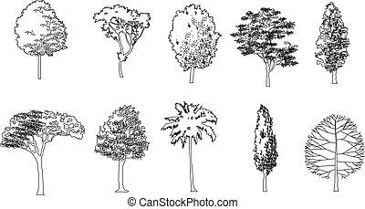 Graphic tree, Vector illustration