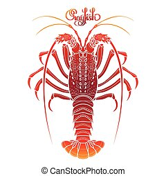 Graphic vector crayfish drawn in line art style. Spiny or rocky lobster. Sea and ocean creature isolated on white background in red colors. Top view. Seafood element. Coloring book page design