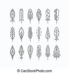 Graphical mono line feathers