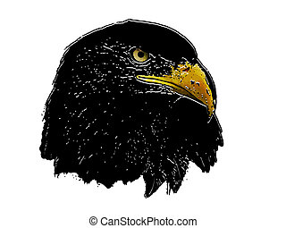 Graphical sketch of silhouette predator eagle