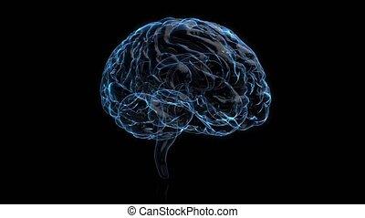 graphique, balayage, projection, créativité, verre, cerveau, arrière-plan., rotation, animation, santé, mri, brain., alpha, conception, modèle, concept., 3d