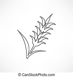 graphique, blé, seigle, icônes, idéal, conditionnement, visuel, orge, oreilles, ou, pain