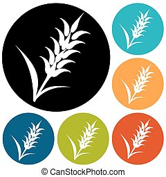 graphique, blé, seigle, icônes, visuel, conditionnement, idéal, orge, oreilles, ou, pain