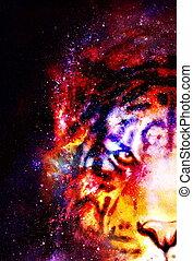 graphique, espace, collage., magique, fire., multicolore, informatique, tigre