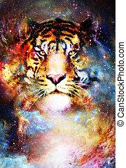 graphique, espace, collage., magique, multicolore, informatique, tigre