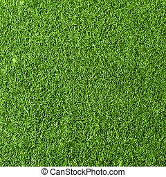 gras, achtergrond, textuur
