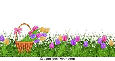 gras, bunter blumenstrau�, fruehjahr, basket., grün, tulpen, blumen-, frische blumen, umrandungen, korbgeflecht