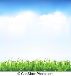 gras, en, hemel