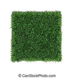 gras, football veld, vector, groene, place., spandoek
