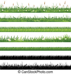 gras, grün, sammlung