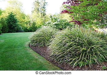 gras, groß, grün, hinterhof, bushes., landschaftsbild