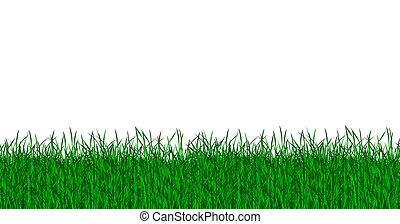 gras, groene, vrijstaand