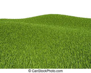 gras, groene, weiden, heuvels