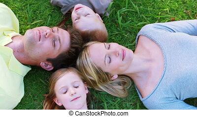 gras, het liggen, gezin