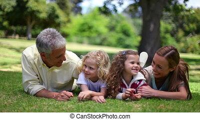 gras, het poseren, terwijl, het liggen, samen, gezin