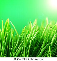 gras, hintergrund, natur