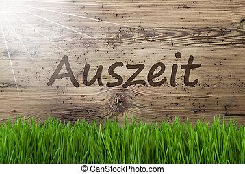 gras, middelen, houten, auszeit, zonnig, achtergrond, ...
