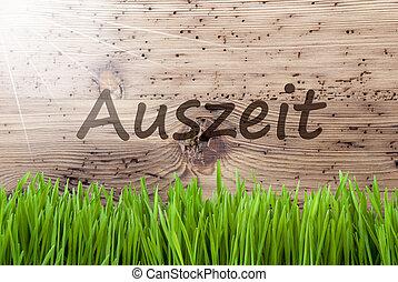 gras, middelen, houten, auszeit, zonnig, helder, achtergrond...