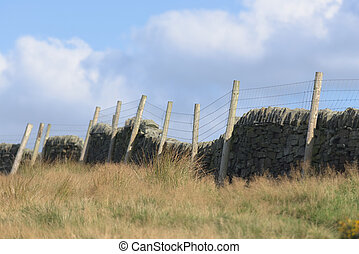 gras, muur, steen, warme, lang, akker, gloed, herfst, omheining