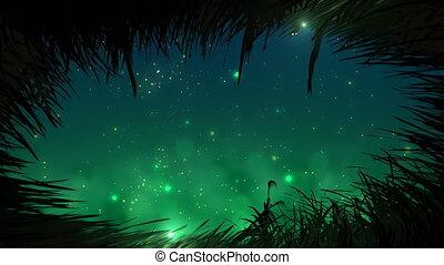gras, op de avond, met, fireflies, lus