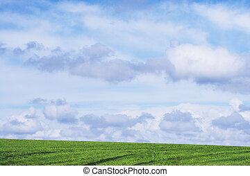 gras, und, himmelsgewölbe