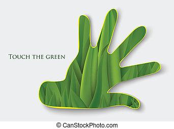 grass., γενική ιδέα , βάγιο , οικολογία