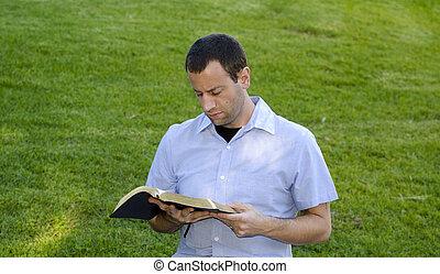 grass., 読書, 聖書
