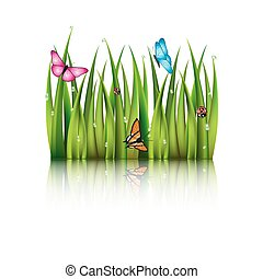 grass., 飛行, 蝶