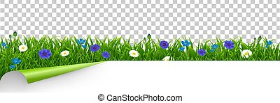 Grass And Blue Flowers Border Transparent Background