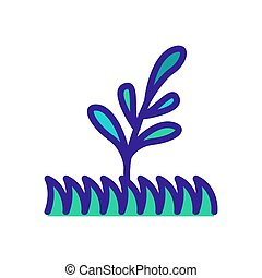 grass and bluegrass icon vector. grass and bluegrass sign. color symbol illustration