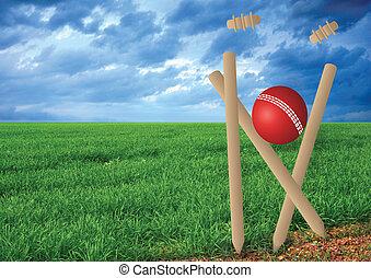 grass and cricket set