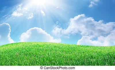 Grass and deep blue sky