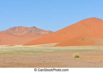 Grass and dune landscape near Sossusvlei, Namibia