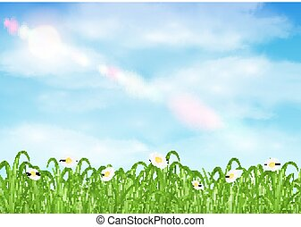 grass and flower with sky background vector