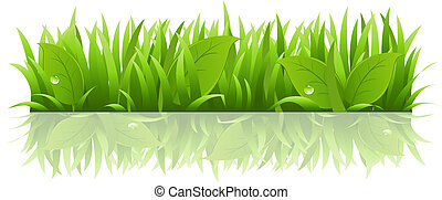 Grass And Leafs, Isolated On White Background, Vector...