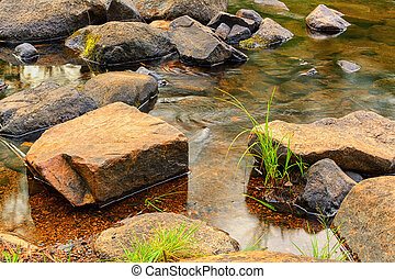 Grass and picturesque stones in clear water. The concept of cleanliness.