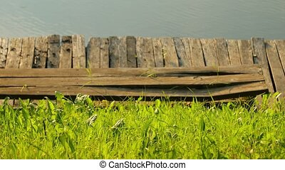 Grass and pier at a lakeside - Green grass on the lakeside,...
