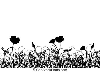 Grass and poppy, vector - Grass and poppy,  illustration
