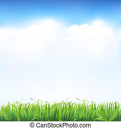 Grass And Sky, Vector Illustration