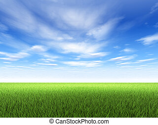 Field of fresh green grass and blue sky with clouds