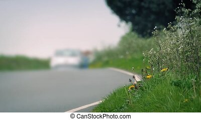 Grass At Side Of Road With Cars