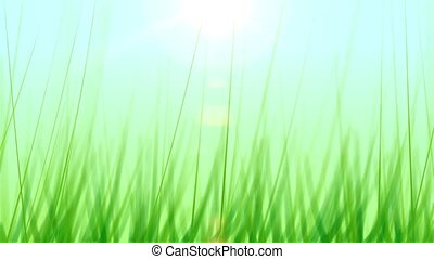 Grass Background 01 (30fps) - Artificial and stylized blades...