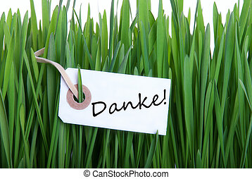 Grass Background with Danke