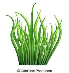 Grass Blade Bunch