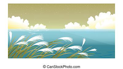 Grass blades against sky