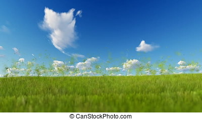 Grass blowing in the wind, particles flying against blue sky
