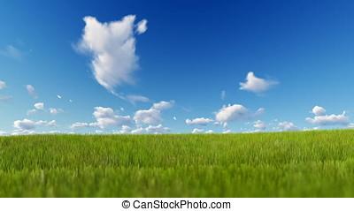 Grass blowing over blue sky, Luma Matte attached